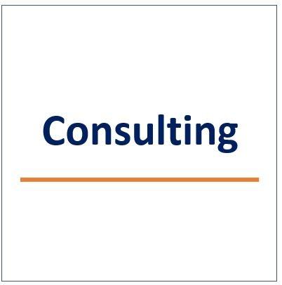 consulting big.jpg