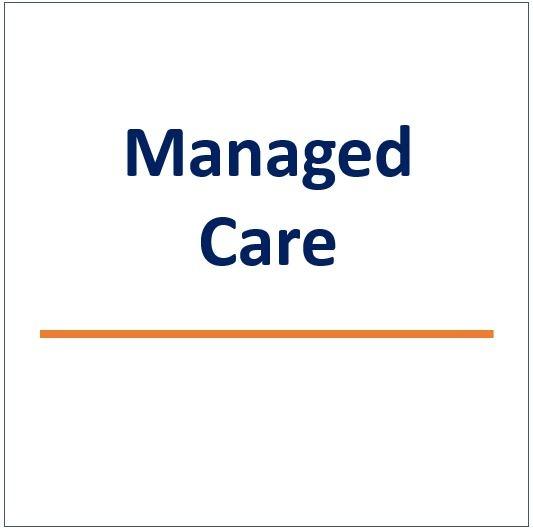 managed care services snip.jpg