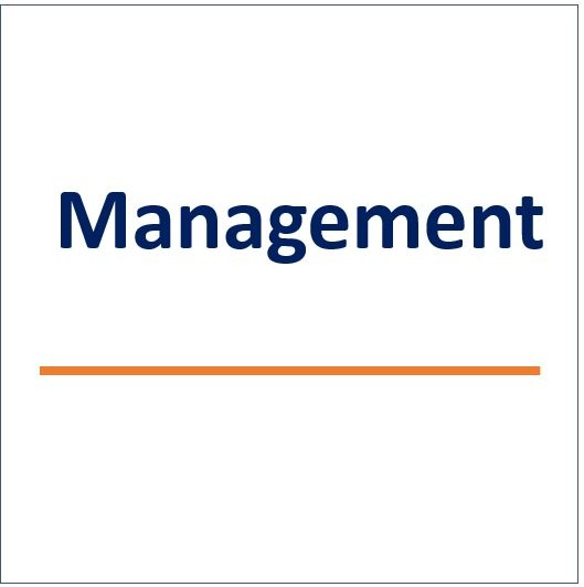 management services snip.jpg